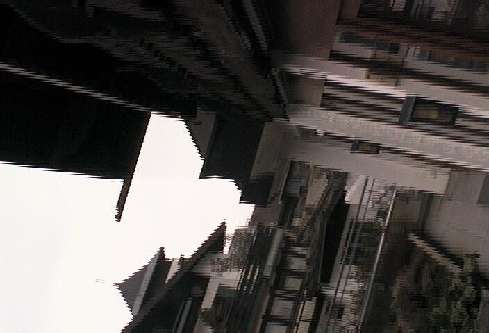 Webcam: Kräutergarten